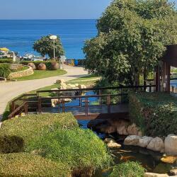 Capo Bay Beach Hotel Gardens
